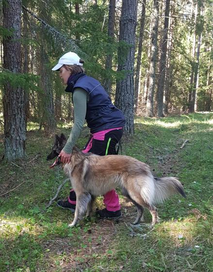 Pippi sök maj 2018 Foto: Anette