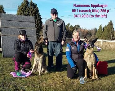 Pippi HK1 04.11.2018
